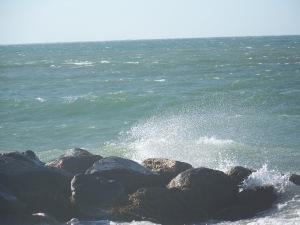 Menemsha Surf
