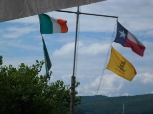 Flags on the Allegheny River