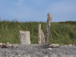 Martha's Vineyard Beach Sculpture
